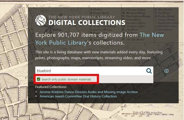 The New York Public Library Digital Collections
